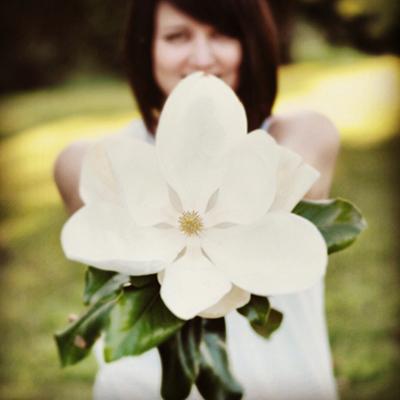 Blog-Magnolia